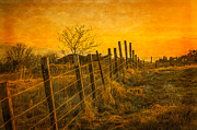 Gloaming Prints - Sunset at the Douglas Park in Largs Print by Tylie Duff