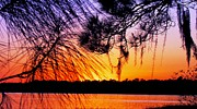 Will Boutin Photos - Sunset at the Lake 2