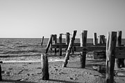 New Jersey Metal Prints - Sunset Beach b/w Metal Print by Jennifer Lyon