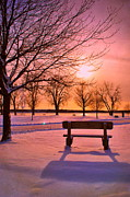 Sunset Bench Print by Emily Stauring