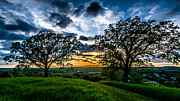 Waukesha County Photos - Sunset Between The Oaks by Randy Scherkenbach