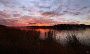 Warwick Marina Park Prints - Sunset Bliss Print by Lourry Legarde