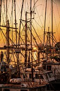 Docked Sailboats Posters - Sunset Boat Masts at Dock Morro Bay Marina Fine Art Photography Print sale Poster by Jerry Cowart