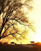 Ranching Art - Sunset Call.. by Al  Swasey
