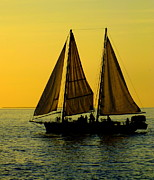 Yellow Sailboats Posters - Sunset Celebration Poster by Karen Wiles