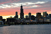 sunset Chicago Print by David Flitman
