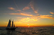 Charters Prints - Sunset Cruise Print by Tom Eckels