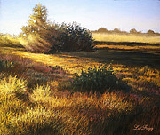 Deb LaFogg-Docherty - Sunset