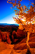 Utah Digital Art Prints - Sunset Fall Print by Chad Dutson