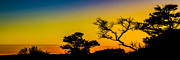 Silhouettes Metal Prints - Sunset Fantasy Metal Print by Debra and Dave Vanderlaan