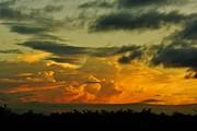 Sunset Glow Print by Lynda Dawson-Youngclaus