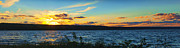 Ithaca Posters - Sunset In Cayuga Lake Ithaca New York Panoramic Photography Poster by Paul Ge