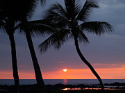 Tropical Photographs Metal Prints - Sunset In Hawaii Metal Print by Athala Carole Bruckner