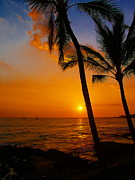 Tropical Sunsets Posters - Sunset In Paradise Poster by Athala Carole Bruckner