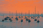 Beach Decor Digital Art Posters - Sunset In Santa Catalina Harbor Poster by Ben and Raisa Gertsberg