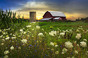 Dairy Barns Posters - Sunset Lace Pastures Poster by Debra and Dave Vanderlaan