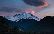 Sunset Light Posters - Sunset Mount Rainier Poster by Mike Reid