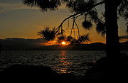 Mischelle Lorenzen - Sunset of Lake Tahoe