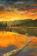 Trees At Sunset Paintings - Sunset on Navajo Lake by Ornon Shaw