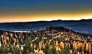 Montana Digital Art - Sunset On Rice Ridge by Janie Johnson