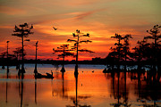 Red Hog Prints - Sunset on the Bayou Print by Jimmy Nelson