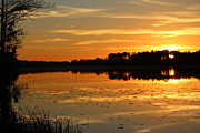 Sunset On The Lake Print by Cynthia Guinn