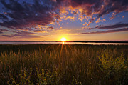 Marsh Metal Prints - Sunset on the Marsh Metal Print by Joseph Rossbach