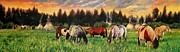 Herd Of Horses Paintings - Sunset on the Plains by Amanda  Stewart