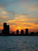 Chicago Photography Originals - Sunset Over Chicago 0349 by Guy Whiteley