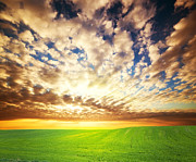 Cloud Art - Sunset over green grass field by Michal Bednarek