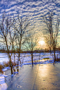 Bare Trees Prints - Sunset over Ice Print by William Wetmore