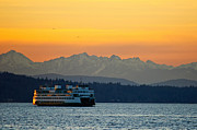 Ferry Photos - Sunset over Olympic Mountains by Dan Mihai
