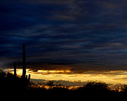 Sunset Over Sonoran Desert Print by Jon Van Gilder