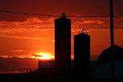 Silos Mixed Media Posters - Sunset Over The Farm Poster by Lana Raffensperger