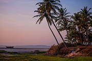 Jenny Rainbow - Sunset over the Goan...