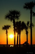 Panama City Beach Posters - Sunset over West Bay Poster by Debra Forand