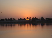 Baghdad Prints - Sunset Palms Over Lake Print by Sharla Fossen