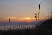 Sea Oats Prints - Sunset Paradise Print by Betsy A Cutler East Coast Barrier Islands