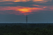 Terry DeLuco - Sunset Power Over Pine Barrens NJ