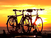 Donna Blackhall - Sunset Ride