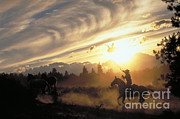 Ron Sanford - Sunset Round-up