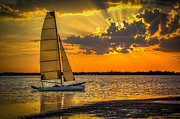 Dunedin Prints - Sunset Sail Print by Marvin Spates