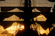 Sails Prints - Sunset Sails Print by David Lee Thompson