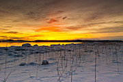 Snow. Ocean Prints - Sunset Shoreline Print by Ron Day