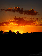 Prescott Photos - Sunset Silhouette  by Aaron Burrows