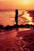 Curvy Beauty Prints - Sunset Silhouette Druif Beach Aruba Print by Thomas R Fletcher