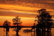 Sunset Sky Print by Carolyn Ricks