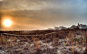 Andrew Crispi Metal Prints - Sunset Through the Fog Metal Print by Andrew Crispi
