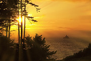Tillamook Rock Lighthouse Framed Prints - Sunset thru the Trees Framed Print by Andrew Soundarajan