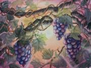 Vine Paintings - Sunset Vineyard by Conni  Reinecke